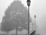 SCHMITT Gerd - Expo 2017 - Papier 2 - Brouillard d'automne