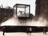 LETSCHER Carine - Expo 2018 - Projection 3 - Que d'eau, que d'os !