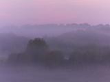 ADAM - Brume matinale (-)