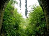 045 Hunsinger Mireille - Au bout du tunnel