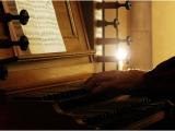 017 Bortoluzzi Claude - Jeu d'orgue