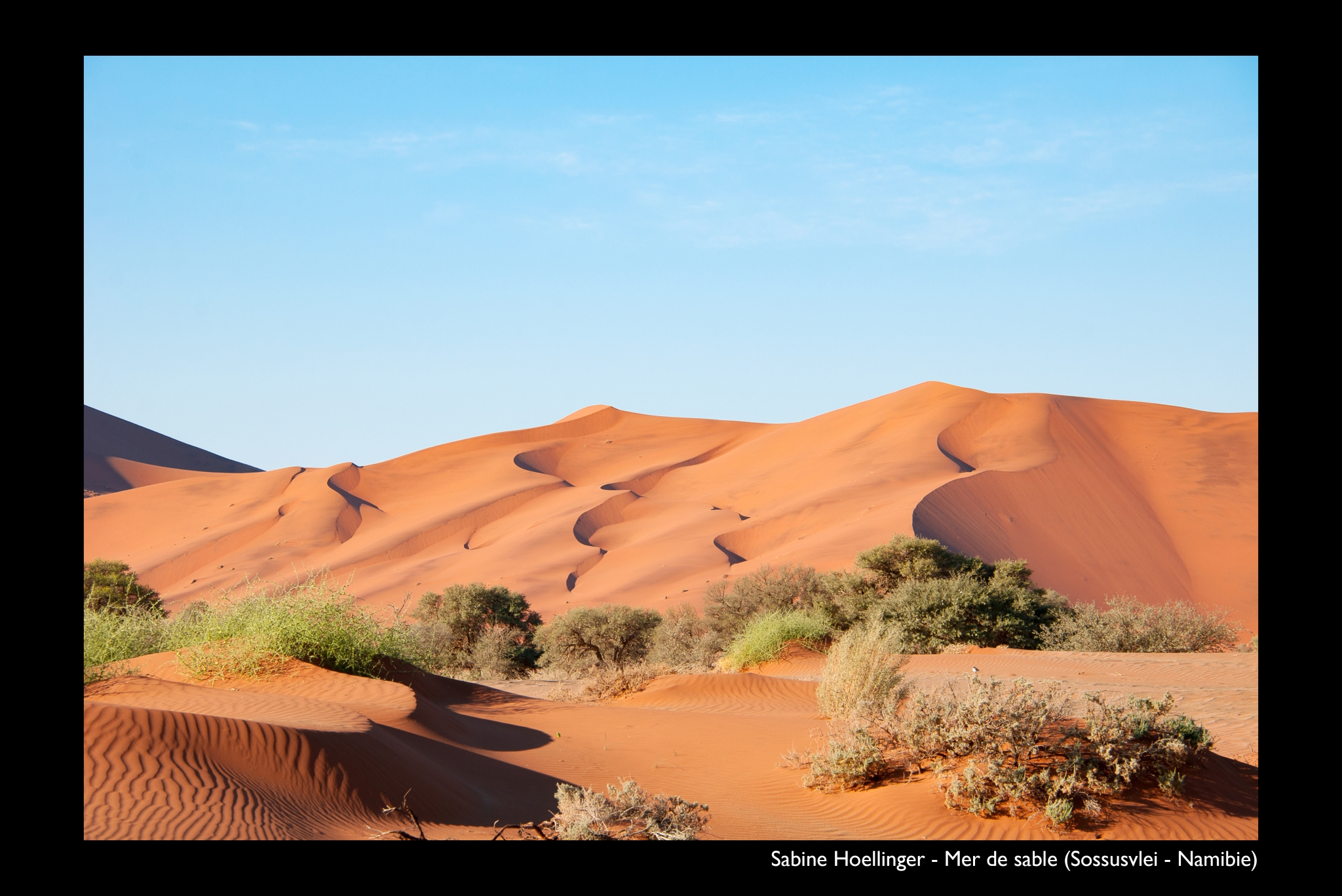 HOELLINGER Sabine - Expo 2018 - Papier 5 - Mer de sable (Sossusvlei - Namibie)