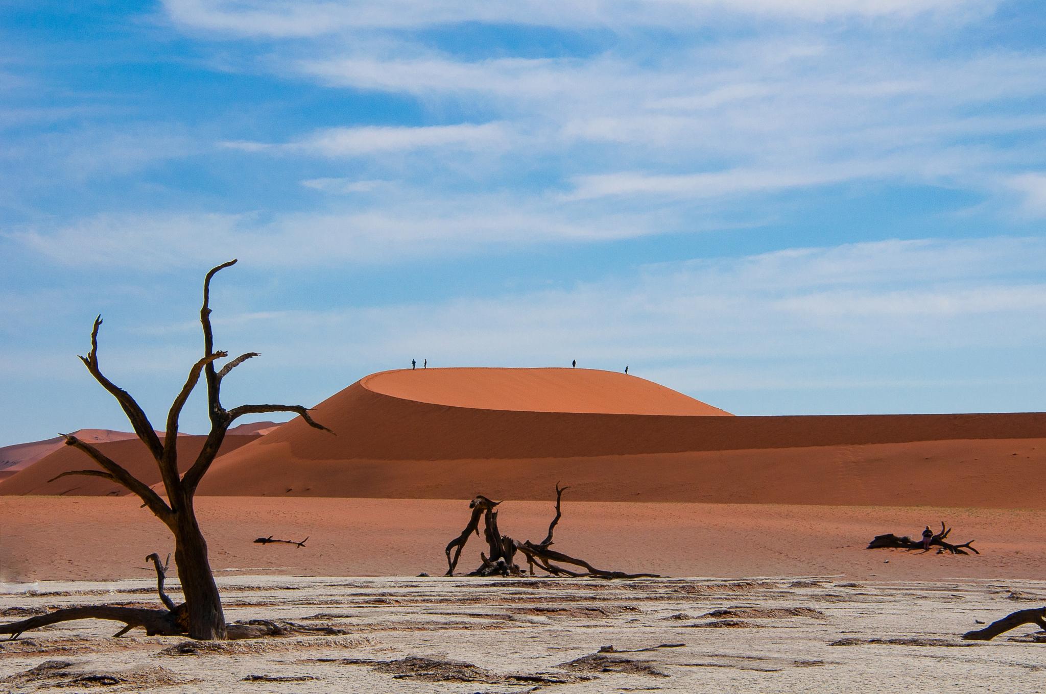 HOELLINGER Sabine - Expo 2018 - Projection 5 - Gâteau de sable (Namibie)