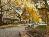 _Street_Dresde_2_EX.JPG