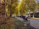 _Street_Dresde_4_EX.JPG