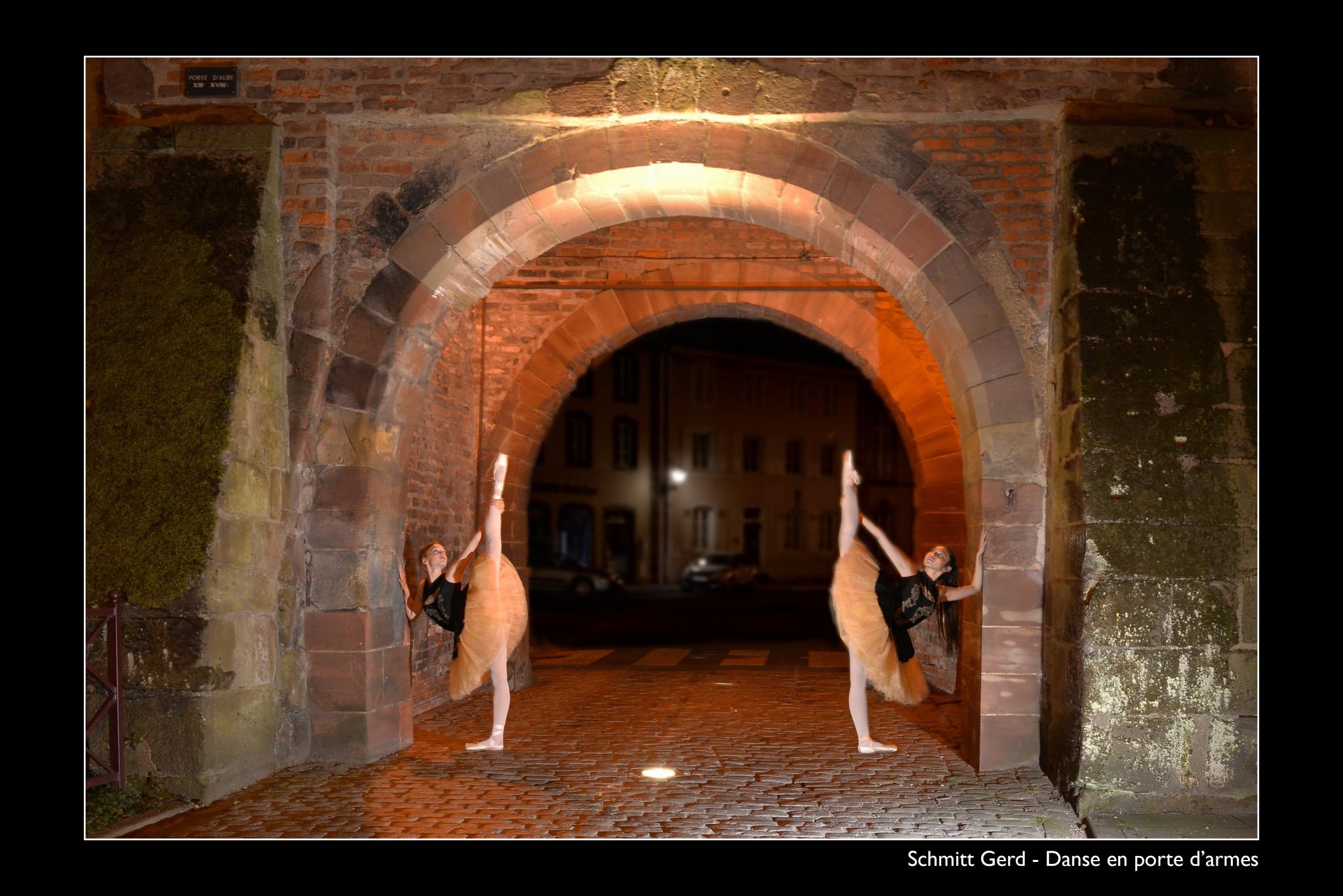 SCHMITT Gerd - Expo 2018 - Papier 5 - Danse en porte d'armes